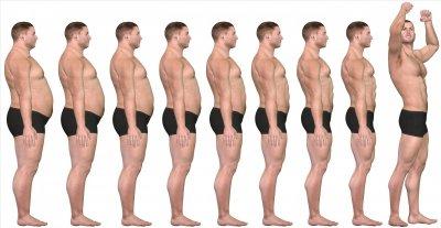 fat loss.jpg
