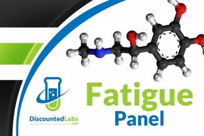 fatigue panel.jpg