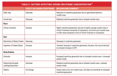 factors affecting creatinine.jpg
