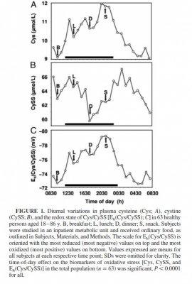 diurnal variations of glutathione.jpg