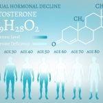 Herbal testosterone boosters